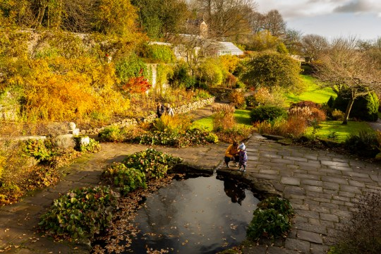Visitors in the garden in autumn at Wallington, Northumberland