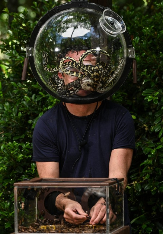Ant McPartlin taking part in helmet challenge on I'm A Celebrity