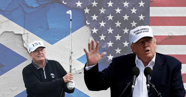 Donald Trump graphic