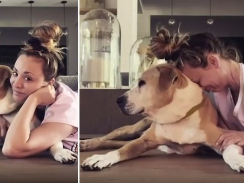 The Big Bang Theory's Kaley Cuoco has us in tears as she shares emotional reunion with beloved dog Norman
