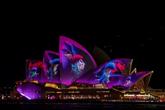 SYDNEY, AUSTRALIA - MAY 24: The Sydney Opera House is illuminated by an artwork projection entitled Austral Flora Ballet by artist Thomas Huang on May 28, 2019 in Sydney, Australia. Vivid Sydney is the largest festival of light, music and ideas in the Southern Hemisphere and runs from Friday 24 May to Saturday 15 June 2019 .
