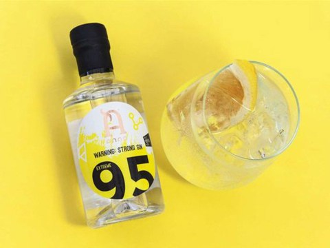 World's strongest gin released – with 95% ABV