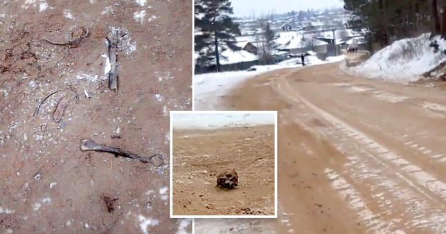 Picture: Nikolay Trofimov Human remains mixed with sand used as de-icer in Russia