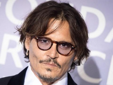 Johnny Depp accepts Polish film festival award after Fantastic Beasts axe