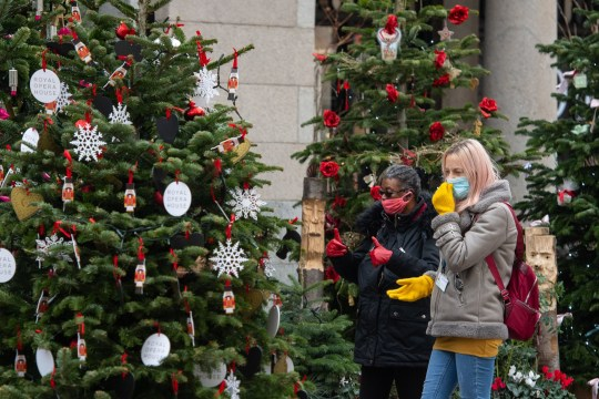 Two people wearing face masks look at a display of Christmas trees at Covent Garden, London, as England continues a four week national lockdown to curb the spread of coronavirus.