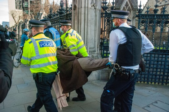 Mandatory Credit: Photo by Johnny Armstead/REX (11036155g) A 72 year old woman, anti-vaccine protestor is arrested outside the gate to the Houses of Parliament. Anti-vaccine protest, London, UK - 24 Nov 2020