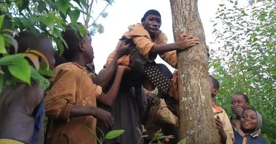 Le garçon rwandais de 21 ans, qui ne peut pas parler et mange de l'herbe, grimpe sur un arbre avec l'aide d'autres enfants du village.  (Flash info)