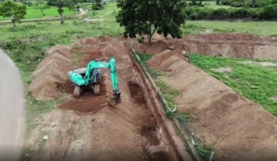 Des éléphants affamés recherchent de la nourriture dans une décharge sri-lankaise