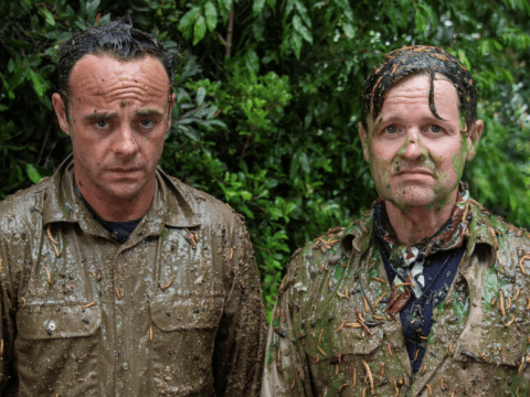 Ant and Dec tackling their first-ever I'm A Celebrity Bushtucker Trial sounds just like you'd expect