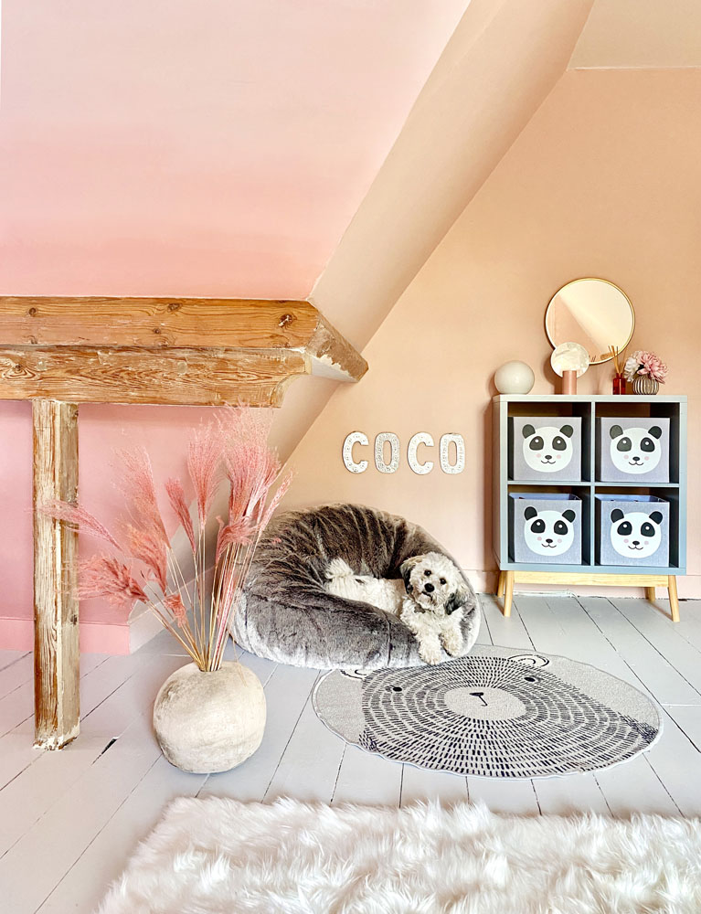 What I Rent: Anna, Crystal Palace - duffy the dog in coco's room