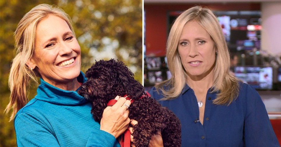 Sophie Raworth with her dog and on BBC News