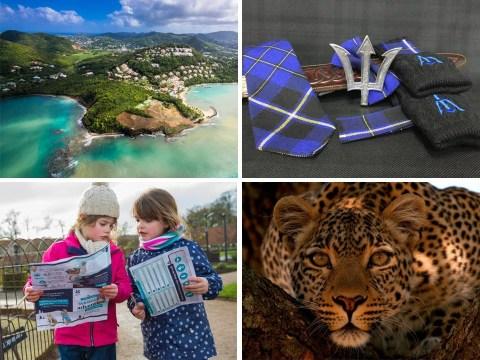 The Hot List: Kickstart 2021 with travel deals, documentaries and Beatrix Potter adventures