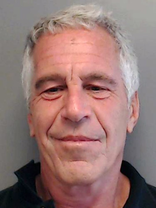 Jeffrey Epstein booking photo The mugshot of Jeffrey Epstein from the Florida Department of Law Enforcement where he is registered as a sex offender.