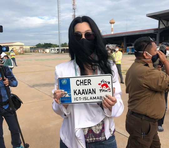 American icon Cher holds a welcoming sign for a rescued elephant named Kaavan arriving at the Siem Reap International Airport, Monday, Nov. 30, 2020, in Siem Reap, Cambodia. Kaavan, dubbed the world's loneliest elephant after living alone for years in a Pakistani zoo, has captured worldwide attention, including Cher, who has been closely involved in his rescue. The elephant will join other elephants in a waiting sanctuary. (Pool Photo via AP)