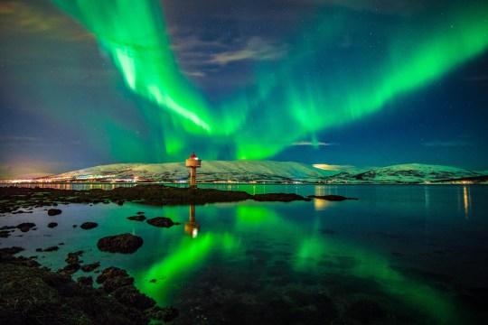 Aurora Borealis dancing over fjord, Tromso Northern Norway