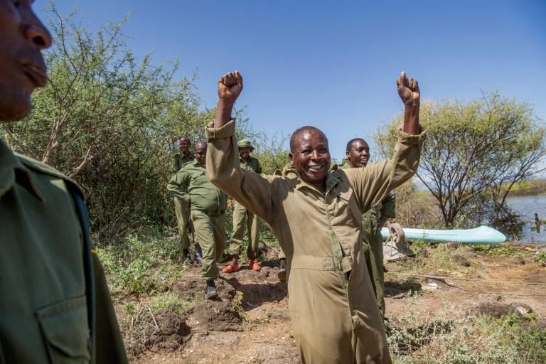 Simbiri Toki applaudit après la transaction réussie d'Asiwa, une girafe de Rothschild (nubienne) qui s'était échouée sur l'île de Longicharo, un sommet de lave rocheuse, à l'intérieur du lac Baringo dans l'ouest du Kenya, est déplacée hors de l'île inondée par une barge le 2 décembre 2020. L'élévation du niveau du lac a coupé la péninsule en une île, piégeant 8 girafes.  La communauté locale travaille avec des organisations de conservation pour les maintenir en vie.  Elle a été déplacée sur la barge pour 1,1.  miles au sanctuaire de clôtures de 4,400 acres dans le 44 000 acres Ruko Conservancy.  Asiwa était isolée dans une partie éloignée de l'île.  Aujourd'hui, il reste moins de 3000 girafes de Rothschild en Afrique, dont environ 800 au Kenya.  (Photo par Ami Vitale)