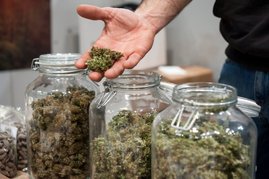 Bocal en verre plein de Cannabis Sativa en vente sur un étal de marché.