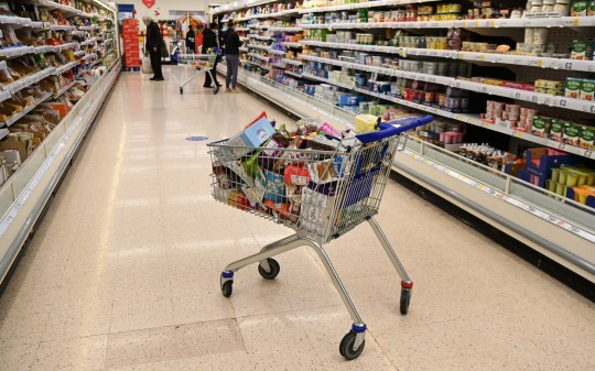 A packed shopping trolley at a Tesco's supermarket in London, Britain, 10 December 2020. Major supermarkets in the UK have warned that a 'No Deal' Brexit may mean food price increases and food shortages in the UK. Brexit negotiations are continuing with a 'No Deal' looking more likely than ever.