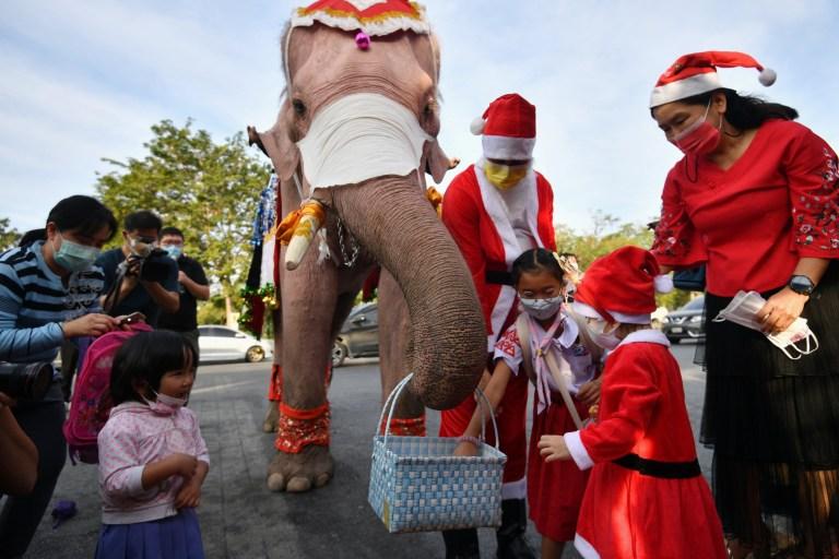 Les étudiants reçoivent des masques faciaux d'un éléphant déguisé en père Noël, dans le but d'aider à prévenir la propagation de la maladie à coronavirus (COVID-19), avant les célébrations de Noël dans une école d'Ayutthaya, en Thaïlande, le 23 décembre 2020.