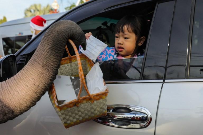 Des éléphants thaïlandais déguisés en père Noël livrent des masques faciaux aux automobilistes dans un coin de rue animé le 23 décembre 2020 à Phra Nakhon si Ayutthaya, en Thaïlande.