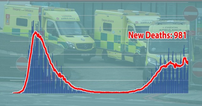 Coronavirus deaths Picture: Metro.co.uk