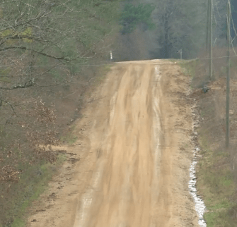 Empty dirt track road with trees on either side