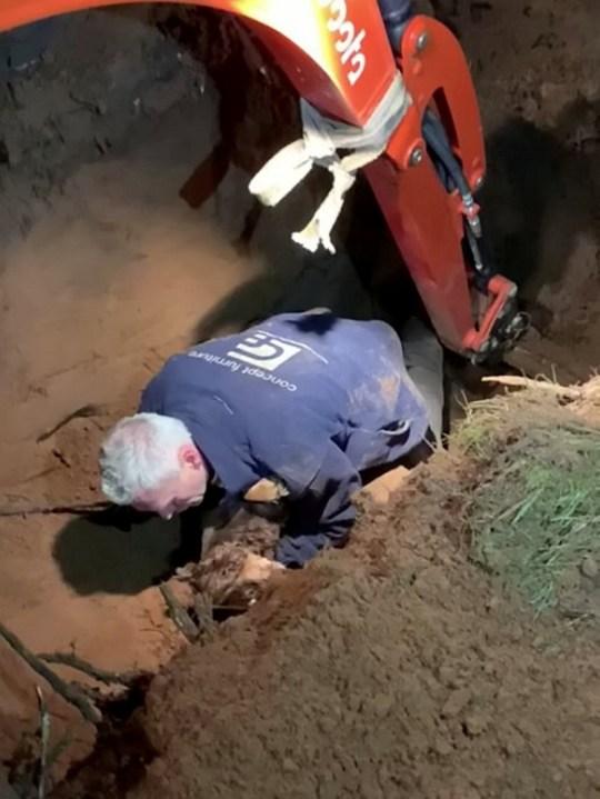 The JCB digger