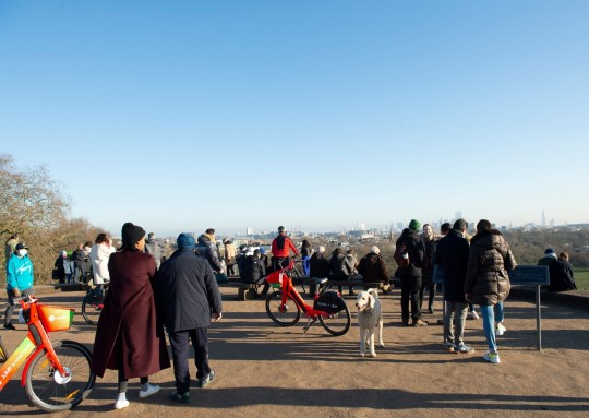 BGUK_2056064 - London, UNITED KINGDOM - Members of the public gather on Primrose Hill to enjoy the sunshine during the national lockdown. Lockdown rules state that people must stay at home unless for essential reasons Pictured: General view BACKGRID UK 9 JANUARY 2021 UK: +44 208 344 2007 / uksales@backgrid.com USA: +1 310 798 9111 / usasales@backgrid.com *UK Clients - Pictures Containing Children Please Pixelate Face Prior To Publication*