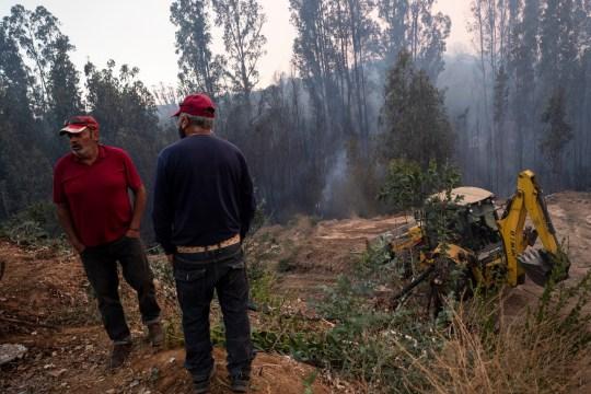 epa08940680 Les gens regardent un feu de forêt brûler à Quilpue, région de Valparaiso, Chili, 15 janvier 2021. Le gouvernement chilien a évacué environ 25 000 personnes à titre préventif à la suite d'un incendie de forêt qui a brûlé quelque 300 hectares de forêt, selon l'Office national de Urgences (Onemi).  EPA / Alberto Valdes