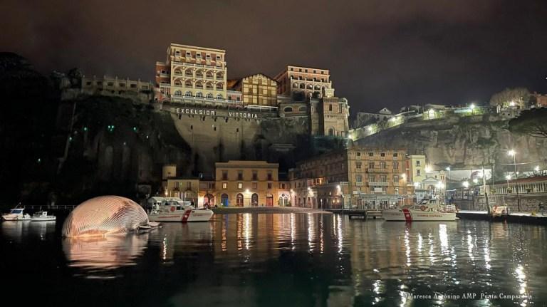 epa08951032 Un document photo mis à disposition par le bureau de presse des garde-côtes italiens (Guardia Costiera) montre les opérations complexes d'enlèvement et de transport d'un spécimen de baleine identifié le 17 janvier dernier, dans le port de Sorrente, dans le sud de l'Italie, le 20 janvier 2021. La délicate activité de remorquage du cétacé a été menée - sous la coordination de la Direction maritime de Naples - par deux patrouilleurs des garde-côtes italiens, qui ont déplacé le spécimen vers le port de Naples, où ils sont arrivés aux premières lueurs de l'aube, après quelques heures de navigation.  Le transport vers le port de Naples permettra la nécropsie nécessaire pour identifier plus précisément les causes de la mort de ce qui semble être l'un des plus gros spécimens de baleine identifiés en Méditerranée.  DOCUMENT À UTILISER ÉDITORIAL UNIQUEMENT / PAS DE VENTES