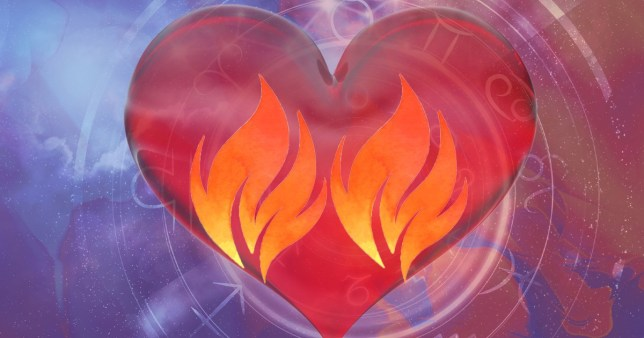 What is your twin flame, and what's sex like with them?
