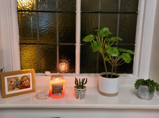 What I Rent: Adam, £450 a month for a two-bedroom flat in shrewsbury - plants and candles on windowsill