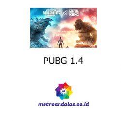 PUBG 1 4