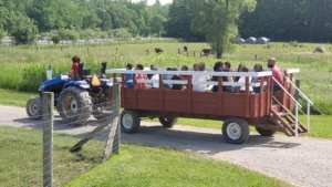 tractor ride at The Petting Farm at Domino's Farms