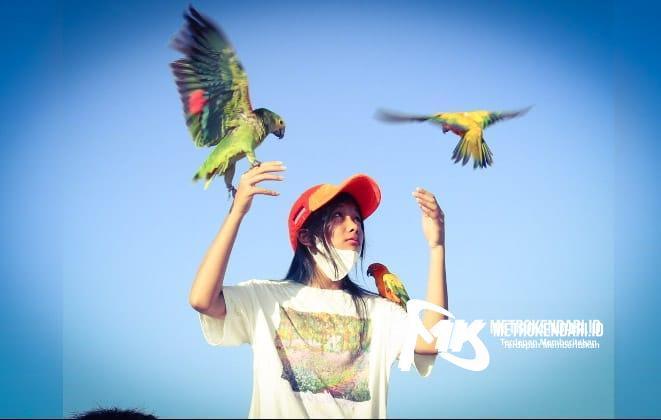 Komunitas Kendari Free Flight