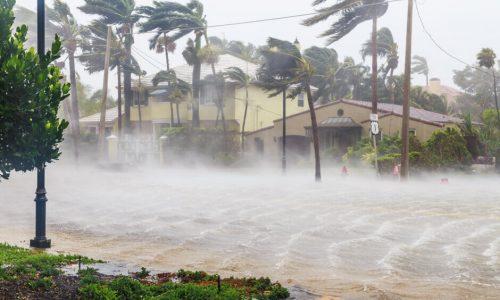south+florida+hurricane