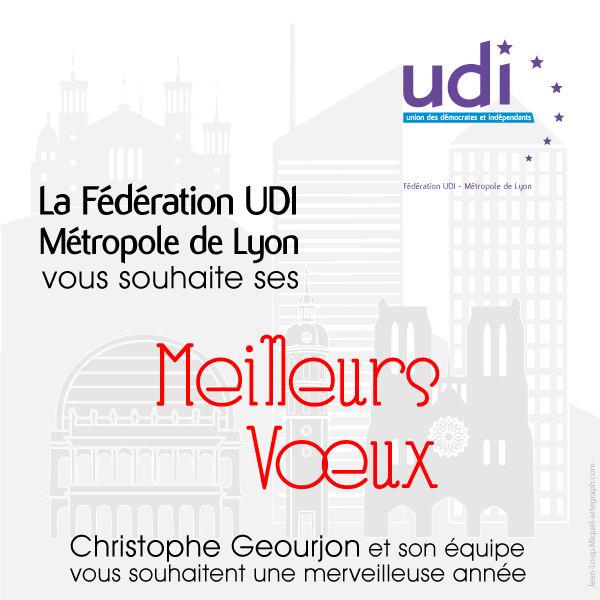 carte-voeux--fédération-UDI