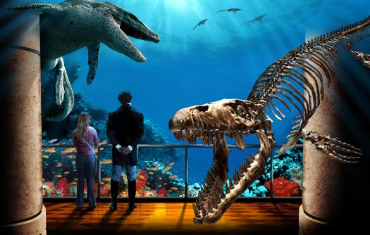 Sea Rex 05