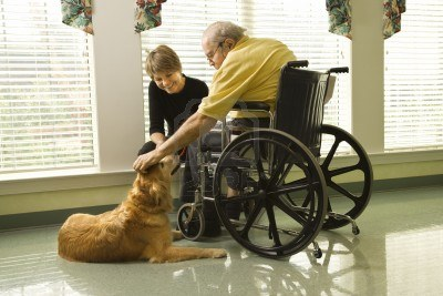 perro de terapia 2