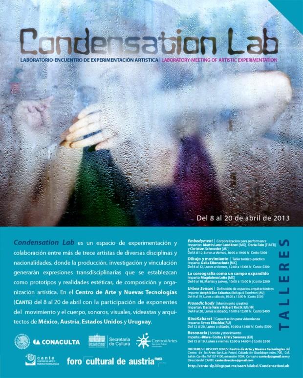 CondensationLab2013
