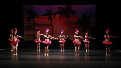 Photo of El Instituto Potosino de Bellas Artes celebrara el día internacional de la danza