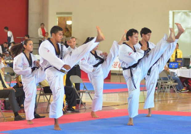 Taekwondo SLP