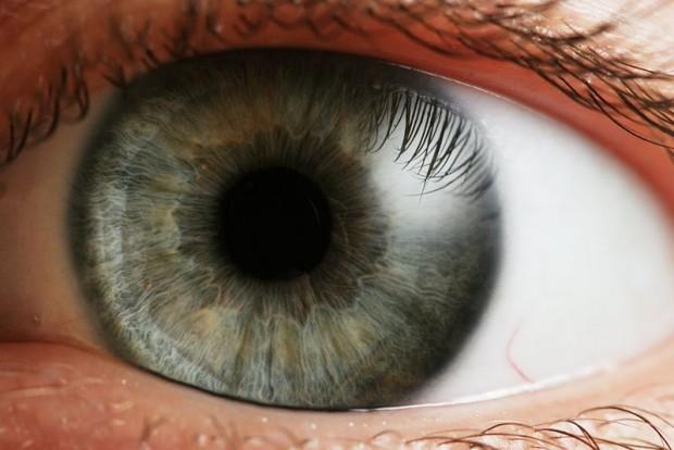 ojo gris