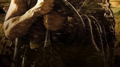 Photo of Riddick El Amo de la Oscuridad