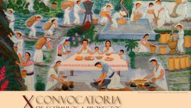 Photo of X Convocatoria de Estímulos a proyectos culturales de la Huasteca