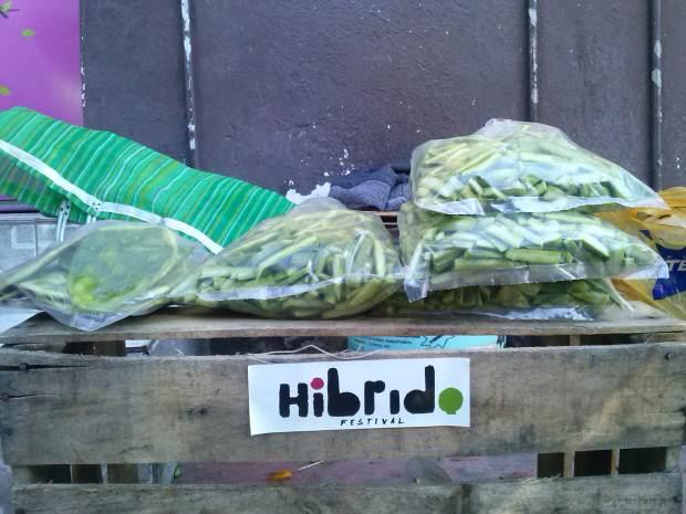 HIBRIDO2