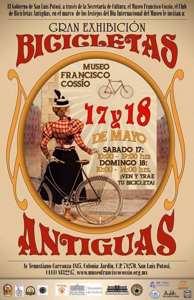 gran exhibición de bicicletas