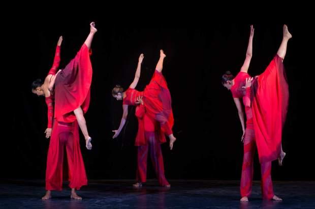 Nueclo Danza - Huellas profundas / pétalos @ Teatro de la Paz | San Luis Potosí | San Luis Potosí | México