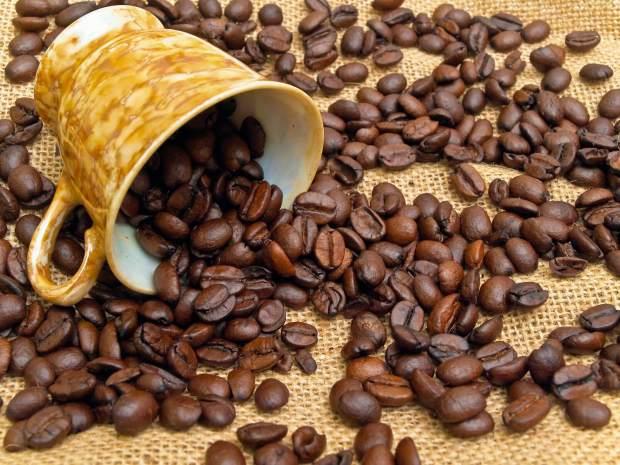 café potosino