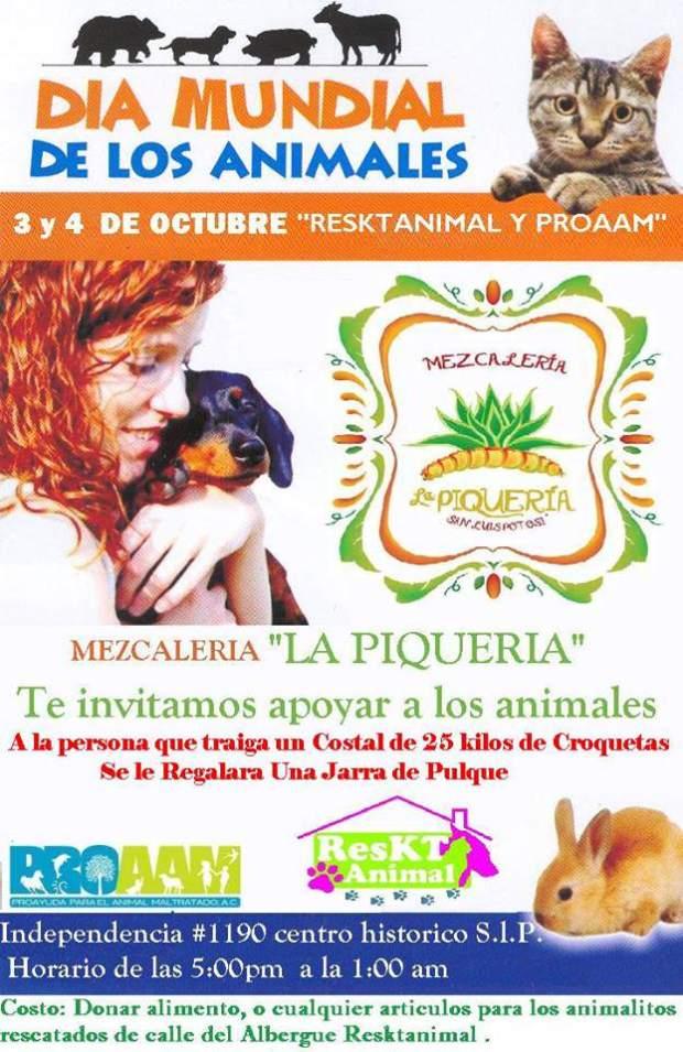 Día Mundial de los Animales en San Luis Potosí